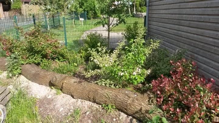 Garten der 72 Std. Aktion